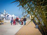 Сочинский порт в солнечный день